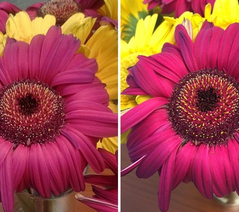 Is the difference in these photos worth $600 to you?