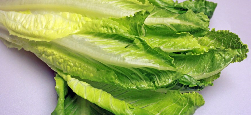 Stay away from romaine lettuce for now, consumer group warns