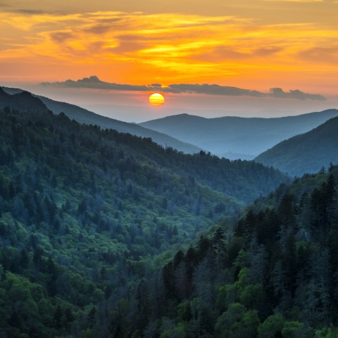 Get free admission at national parks today