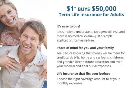 3 companies that issue term life insurance policies with ...