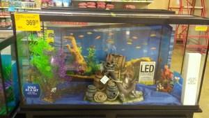 marineland aquarium