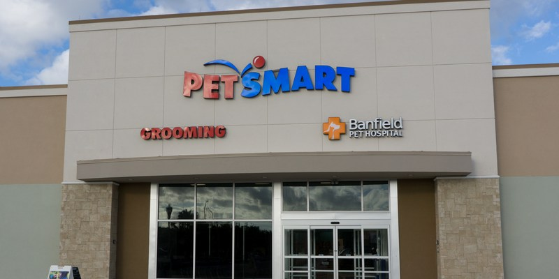 Chewy.com vs. PetSmart.com vs. PetSmart in-store: Who has the best prices?