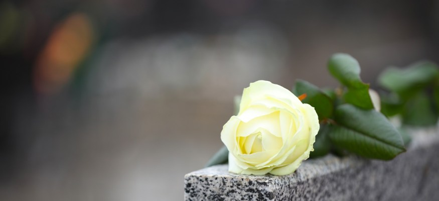 Looking to Lower Your Funeral or Cremation Costs? Join a Non-Profit Memorial Society