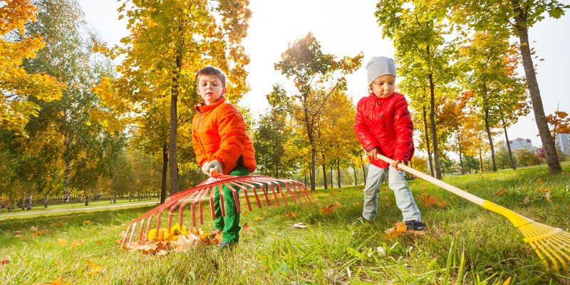 Kids raking leaves