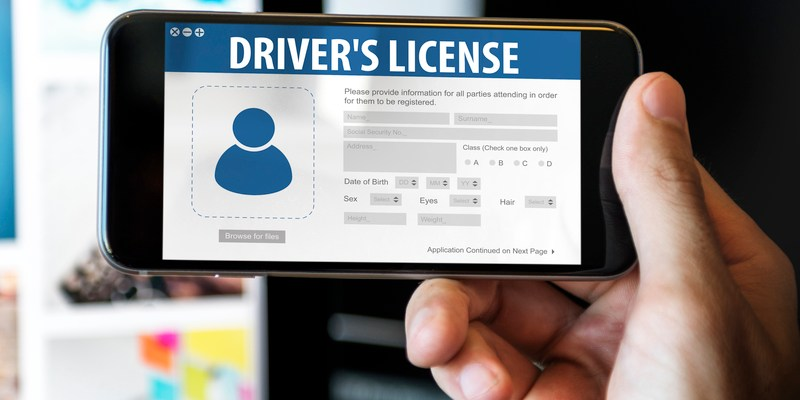 For Technology Are Plastic Driver's States Licenses Howard Digital Ditching - Clark