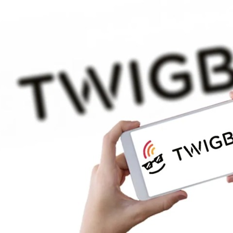 Twigby Review: 6 Things to Know Before You Sign Up