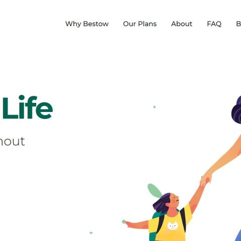 Bestow life insurance homepage