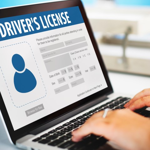 Drivers License Online