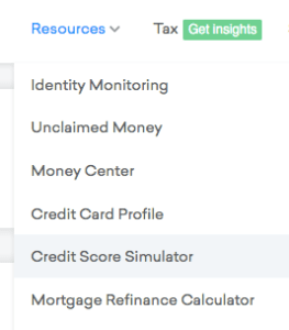 Credit Score Simulator