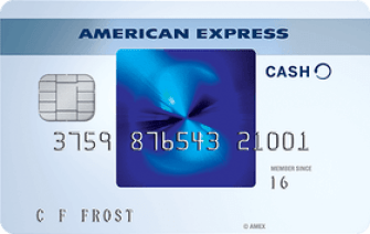 American Express offers 15 months of 0% with the Blue Cash Preferred card.
