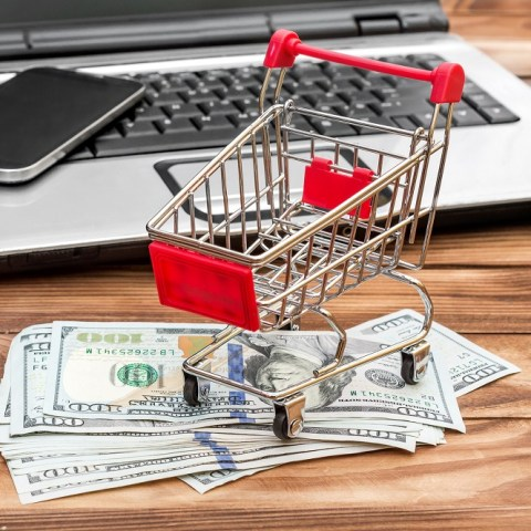 Internet shopping: cart, laptop and dollars