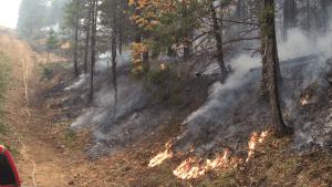 archer mountain fire