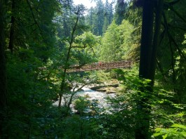Clark County Walks