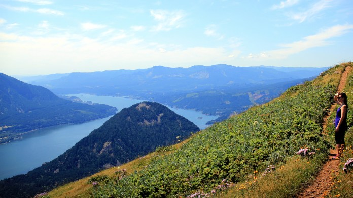 Dog Mountain Instagram-worth location