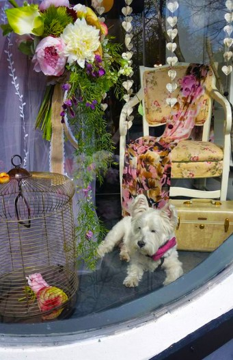 Luepke Flowers and Finds Vancouver Marty Round Window