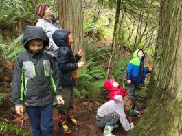 Clark County Summer Camps TreeSong Nature Awareness and Retreat Center