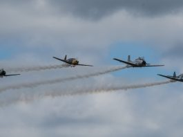 2017 Olympic Air Show Frank Townsend
