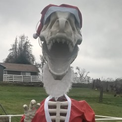 Rex on 179th Santa Rex