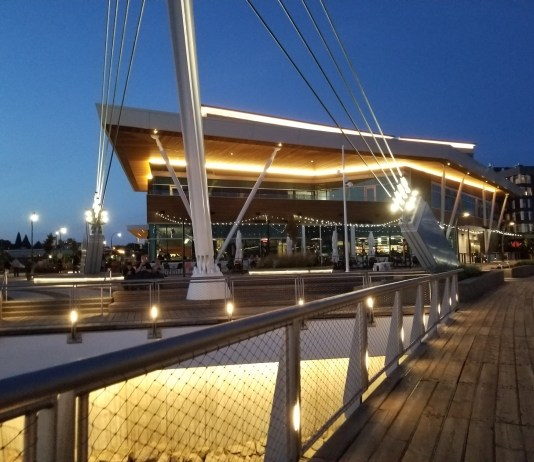 Vancouver Waterfront Park District Wildfin