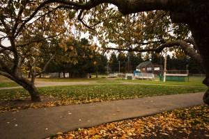 Winter walks in vancouver David Douglas Park