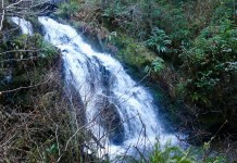 Day trip Waterfalls Olympic Peninsula-Cascade-Falls