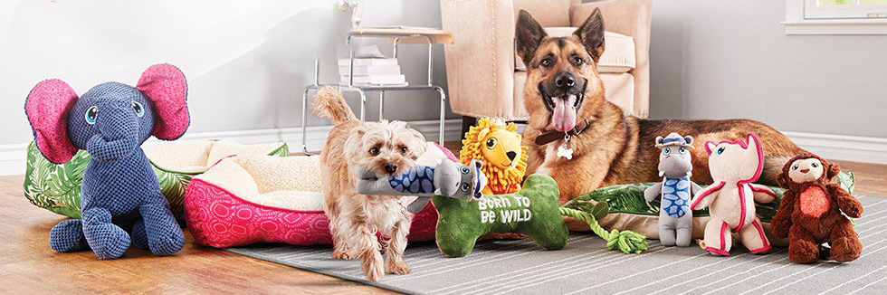 Today only: Save big during Petco's Spring Madness sale!