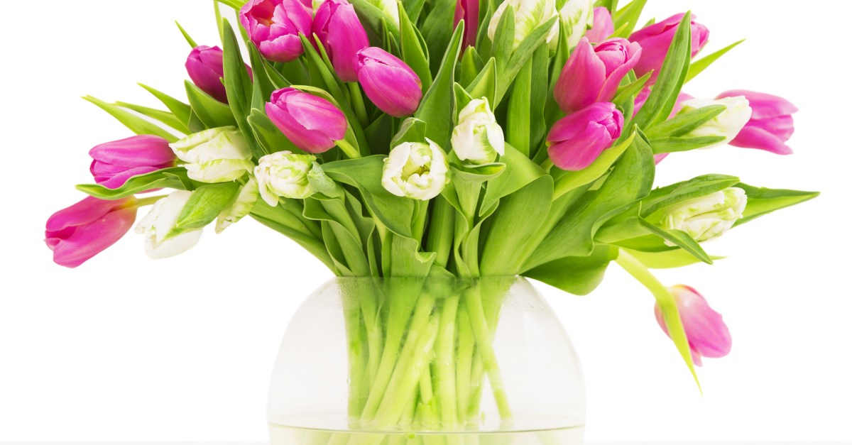 6 places to get the best prices on Mother's Day flowers!