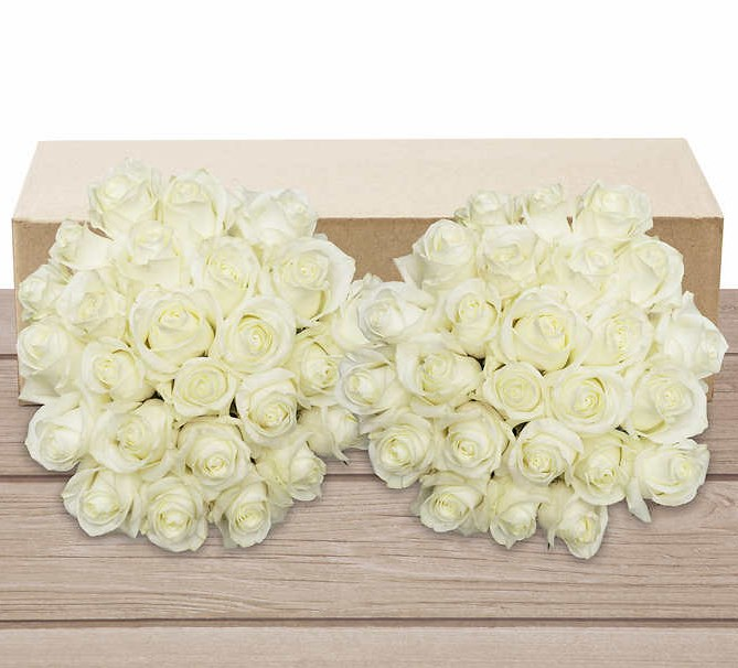Costco members: Pre-order 50 stem white or yellow roses for $50 while supplies last