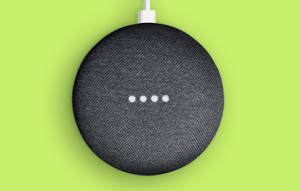 charcoal google home mini