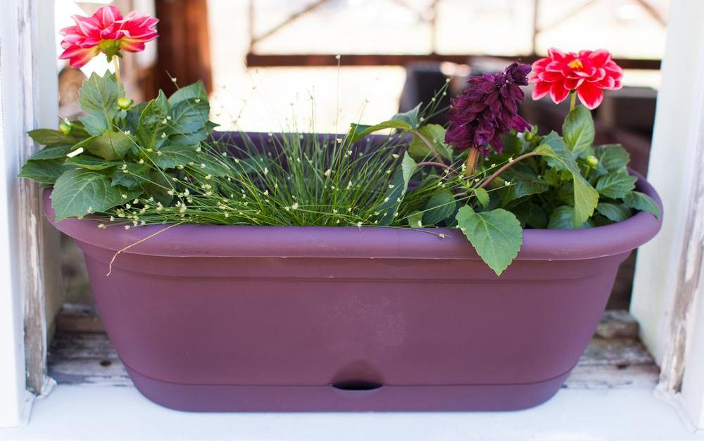 Today only: Select planters and window boxes from $10