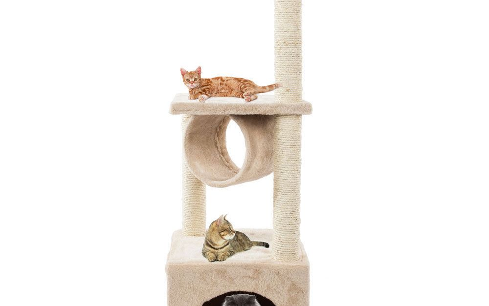 36″ cat tower for $26, free shipping