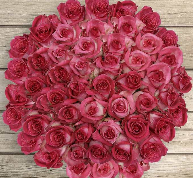 Costco members: Pre-order 50 roses for $40 while supplies last
