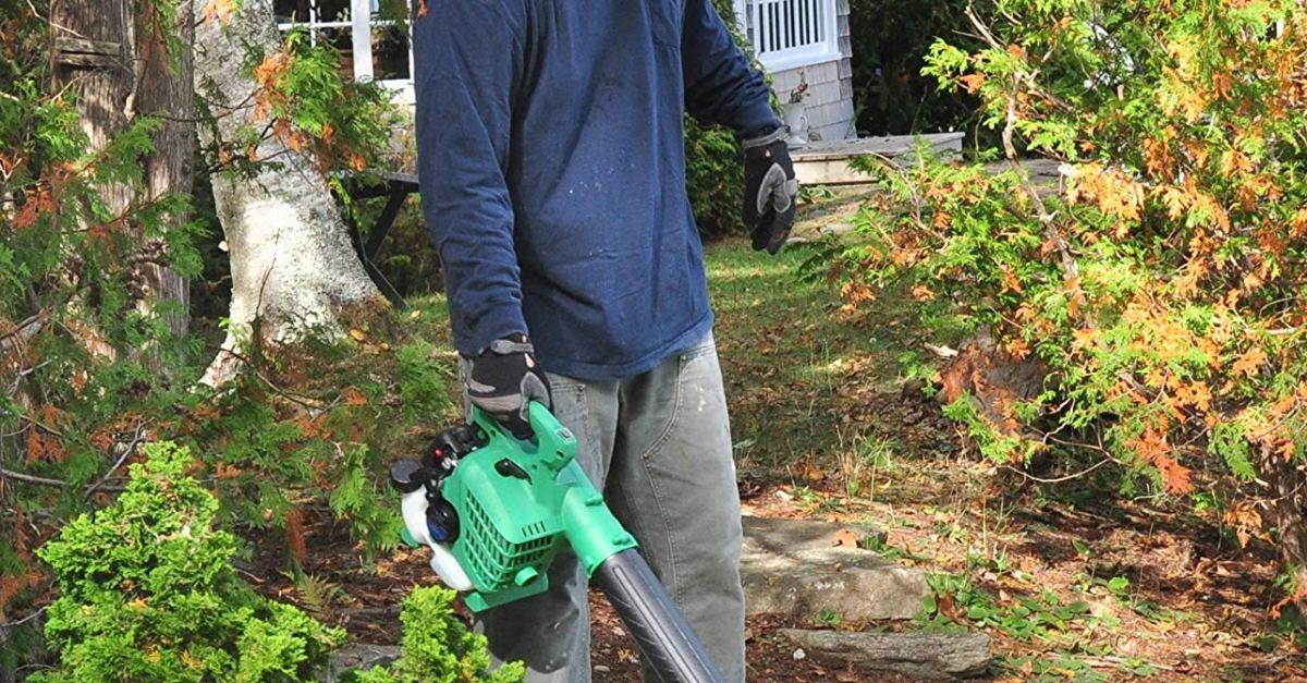 Hitachi gas powered leaf blower for $99