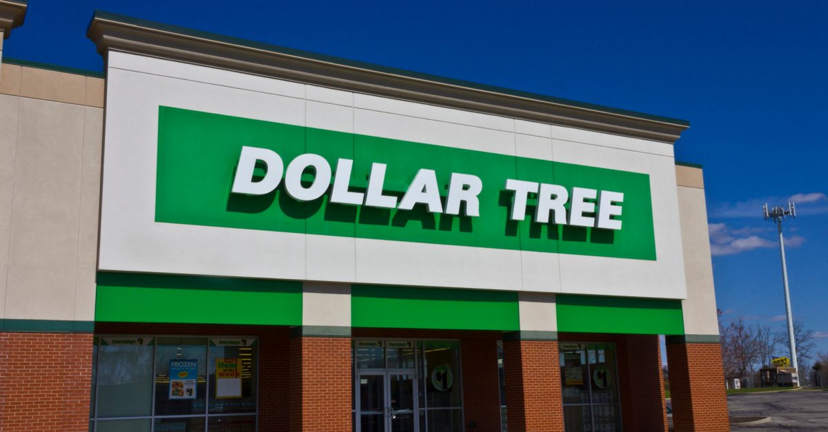 The best deals at Dollar Tree right now!