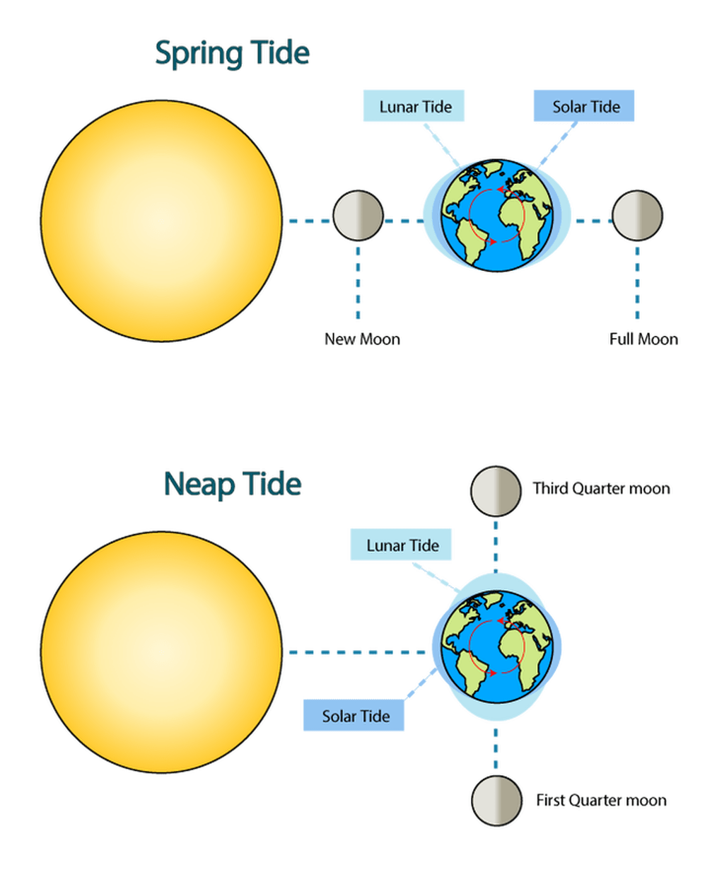 diagram of sunlight and moon wiring diagram tags diagram of sunlight and moon [ 1014 x 1230 Pixel ]