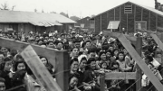 Japanese internment, 1942.