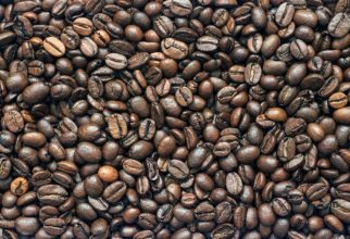 Typical coffee beans