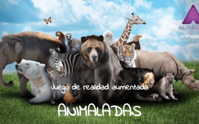 Proyecto -Animaladas-