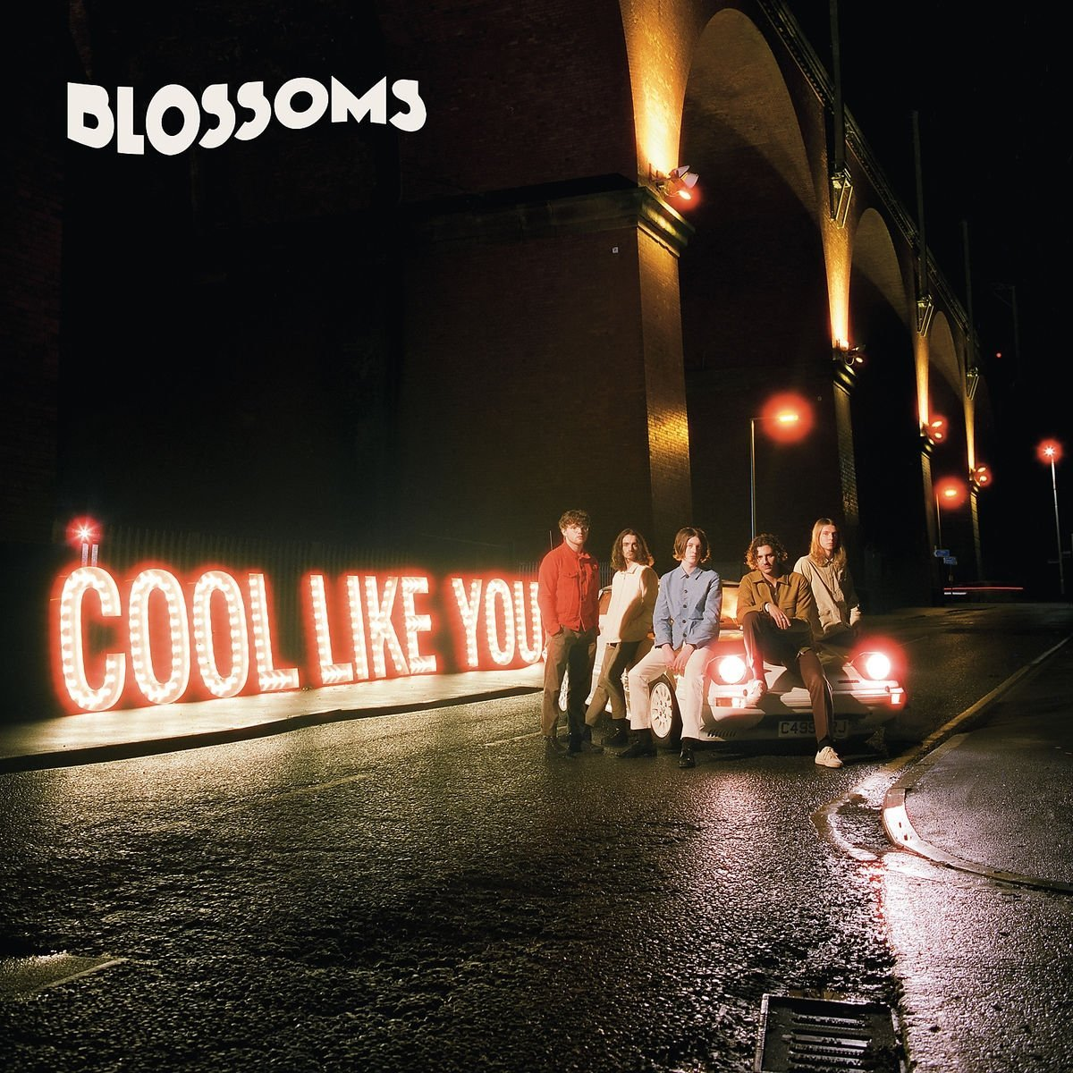 Blossoms  Cool Like You  Reviews  Clash Magazine