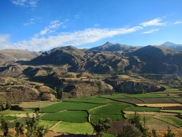 Colca Canyon Peru Trip