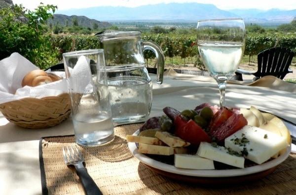 Best Wineries to Visit in Mendoza