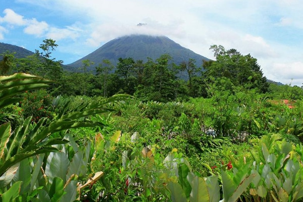 Arenal Volcano surrounding nature