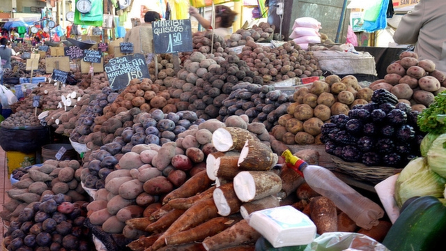 Just some of the many Peruvian potatoes at San Camilo Market