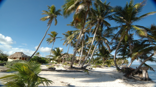 Ambergris Caye beach in Belize