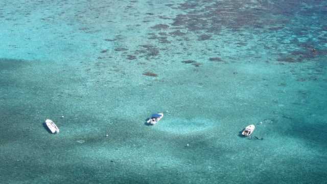 Hol Chan Marine Reserve in Ambergris Caye