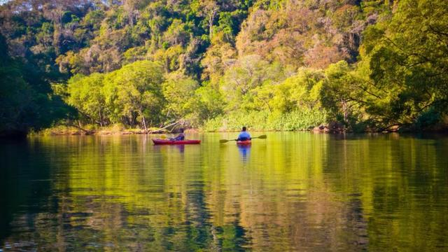 Kayaking through the Jungle in Nicoya Peninsula