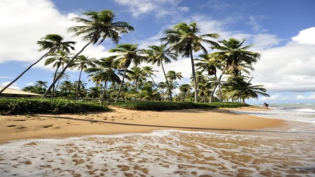 Praia do Forte beach, Brazil