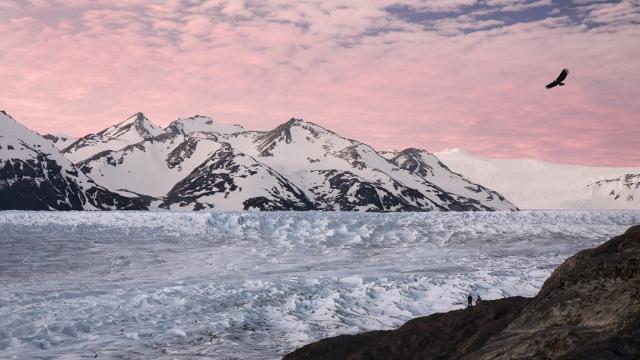 Torres del Paine Glaciers