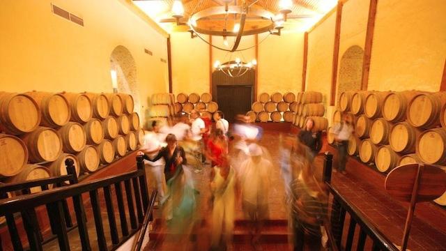 Concha y Toro Winery Chile