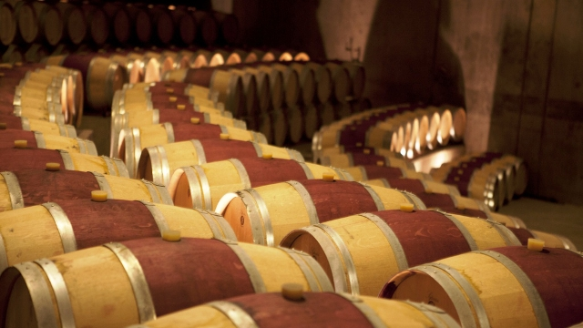 The diverse range of Chilean wines are waiting for you!